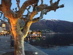 Ascona  Tessin in der Dämmerung                     Switzerland