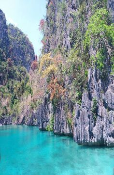 Green Lagoon Coron, is located minutes far from the port of Coron Island, north Palawan. How to get to the Green Lagoon Coron Coron, Palawan, Ecommerce Hosting, Philippines, River, Green, Pictures, Outdoor, Photos