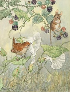 <*> RW. Molly Brett illustration- a little wren and mouse with morning glory and raspberries.