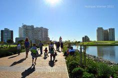 45 Best Green Point Park Cape Town Images Cape Town Urban Park