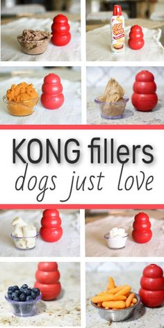 Here are some awesome kong recipes, kong fillers, kong treats, and things you can put in your kong to keep your dog occupied when you need to do something. Puppy Treats, Diy Dog Treats, Homemade Dog Treats, Dog Treat Recipes, Dog Food Recipes, Frozen Dog Treats, Summer Dog Treats, Dog Biscuit Recipes, Pumpkin Dog Treats