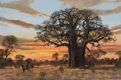 Oil Painting - Baobab Sunset with Buffalo by Errol Norbury