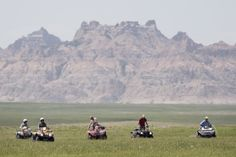 #SouthDakota #RapidCityJournal #Photos #Photography (Ryan Soderlin/Journal staff) #Prairiedogs #DeltaDust