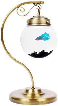 AquaBetta in antique brass  small for a betta bowl but could make a cute LED lighted terrarium