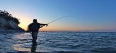 Pèche mania a la ligne   Conseil en Vidéo pêche Eaux douce ou Mer   En savoir plus sur http://peche-mania.e-monsite.com/videos/#dj5HwzyWuKYFCvRh.99