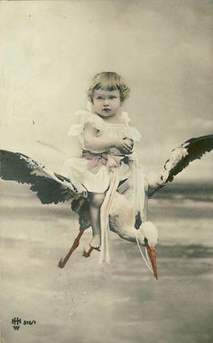 The stork is a little late on this delivery. by Meaghan Courtney, via Flickr