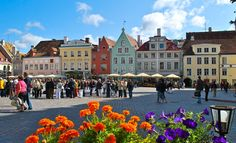 TALLINN, ESTONIA - Just a 45-minute hi-speed ferry from Helsinki, Tallinn makes a great day trip. But spend at least one night if your schedule allows, this modern city has plenty of medieval charm and several terrific sites.