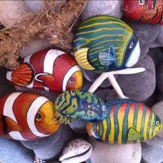 """Mi piace"": 236, commenti: 9 - Ayşegül Tolunay (@pietraizmir) su Instagram: ""🐠🐟🐬#balıklar #rockpainting #stoneart #taşboyama #denizdibi #resif #renkli #elyapımı #handmade…"""