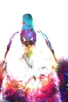 "themoonismywonderland: "" My Cosmic Wolf """