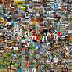 This Guy Beat Google's Super-Smart AI—But It Wasn't Easy | A visualization of a convolutional neural network, a new breed of  AI [Artificial Intelligence] algorithm that can do things like identify images.