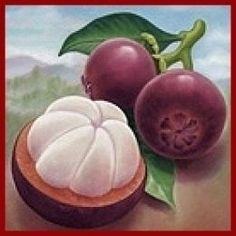 Delicious fruit!