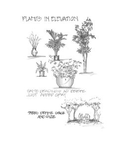 """Plants in Elevation with Gray  """"Hand Drafting for Interior Design"""" by Diana Kingsley"""