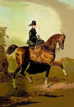 A Ladies' Horse by Samuel Sidney - Art Print #9785870655321 #Buyenlarge #Horses #New #RidingandRacing