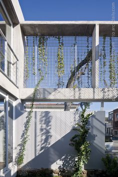 Gallery - Ibiray House / Oreggioni Prieto - 5