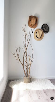 14 DIY Tree Branch Decor Projects