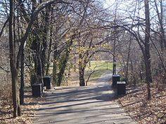 Winter in Prospect Park Brooklyn.