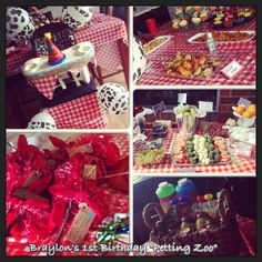 Petting Zoo party details
