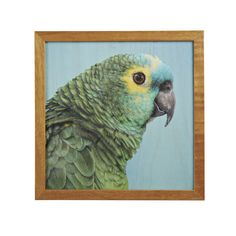 Framed plywood artwork with rio design (PAINTR).  Dimensions: 310mm x 310mm  NOTE: THIS PRODUCT REQUIRES A 4-6 WEEK LEAD TIME.