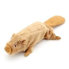 8-inch Krunchy Kritter With Water Bottle Dog Toy - Beaver
