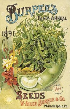 Burpees ❤ Vintage Art Seed Label Poster Print! ☮~ღ~*~*✿⊱ レ o √ 乇 !! - Victorian Style.