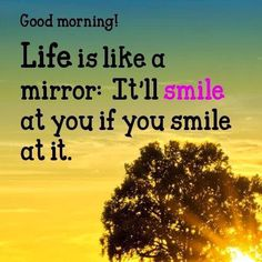 Morning you beautiful lot