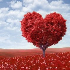 A Valentine's Day tree for you love birds out there~~  #valentine #love #hearts #valentinesday #red