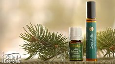 4 #EssentialOils For Natural Winter Skin Care