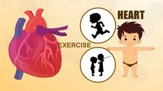 Heart - Human Body Parts - Pre School - Animated Videos For Kids