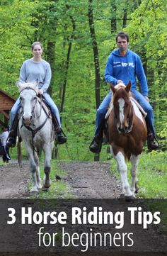 If you are a beginner, do not ride again without reading these three tips. It is going to save you from spoiling your horse.