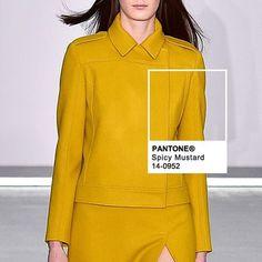Pantone color Spicy Mustard at Jasper Conran FW16 | #ochre #pantone