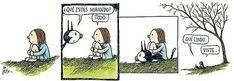 Post: Enriqueta, por Liniers.