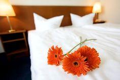 Das 3-Sterne Superior BEST WESTERN Ahorn Hotel Stephanshöhe im schönen Ost-Erzgebirge