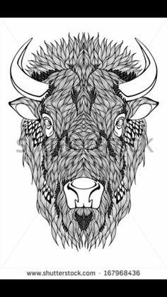 Native American bison