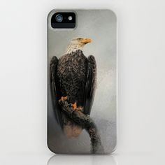 High Perch - Bald Eagle - Wildlife iPhone & iPod Case by Jai Johnson - $35.00