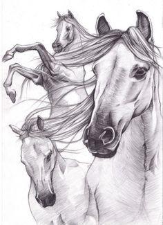 Horse drawings sketch_works: various drawings . Horse Drawings, Animal Drawings, Pencil Drawings, Art Drawings, Pencil Art, Horse Sketch, Horse Anatomy, Horse Coloring Pages, Horse Artwork