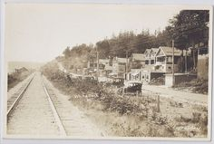 https://flic.kr/p/dWqM4M | Real Photo Calder Postcard showing the east side of White Rock, B.C. around 1920. | Real Photo Calder Postcard showing the east side of White Rock, B.C. around 1920. There is a sign on a store in this photo - MELVILLE'S Boarding House and STORE another sign reads - McKAY'S Ice Cream & Lunch.