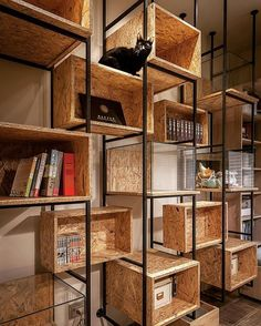 #cat #catwalk #cabinets #transformablefurniture #industrialstyle #osb #iron #glass #display