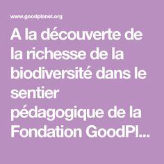 A la découverte de la richesse de la biodiversité dans le sentier pédagogique de la Fondation GoodPlanet - Domaine de Longchamp.