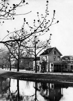 Haarlem: Kloppersingel, met zicht op het Frans Halsplein. [1931].
