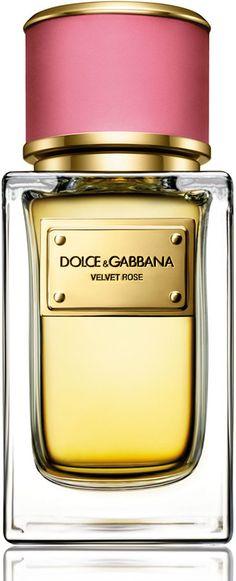 Dolce & Gabbana Fragrance Velvet Rose Eau de Parfum, 50 mL