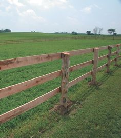 Board Horse Fence . Horses will chew wood