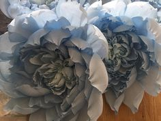Pale blue crepe paper giant peonies that will be used for summer window display in the coming months #windowdisplay #crepepaper #cartotecnicarossi #handmade #giantpaperflowers #weddinginspiration #paperflowersbackdrop #paperart #paperflowers