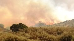 Evacuations urged as 1,200-acre fire burns at 'critical rate' in Riverside County http://www.latimes.com/local/lanow/la-me-ln-manzanita-fire-20170626-story.html#utm_sguid=149300,e52377a7-8caa-a960-b77d-85e58a47ea15