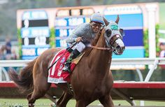 Revisit the Pacific Classic at Del Mar in Photos! - Runnin' Down A Dream - Horse Racing Nation