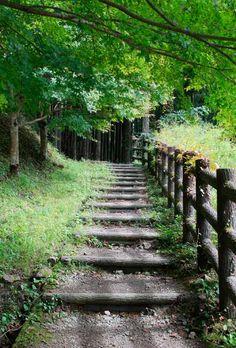 World Heritage, Pilgrimage Road to the Three Grand Shrines of Kumano, Japan
