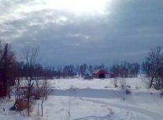 Winter Scene in Mb.
