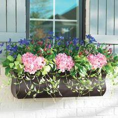Butterfly Garden Window Box Filler