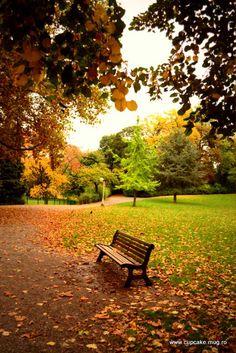 autumn, lovely autumn,