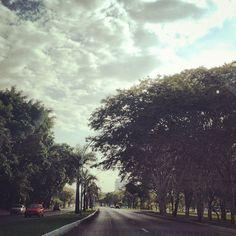 Eixo Sul, Brasília - DF