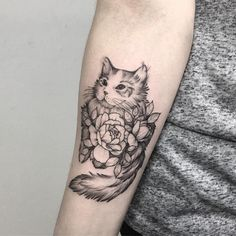 "Polubienia: 459, komentarze: 3 – tattoo artist 🌿 Warsaw, Poland (@mongotattoo) na Instagramie: ""kitten in peonies #tattoo #tattoos #cat #catlover #cattattoo #kittentattoo #catsofinstagram…"""